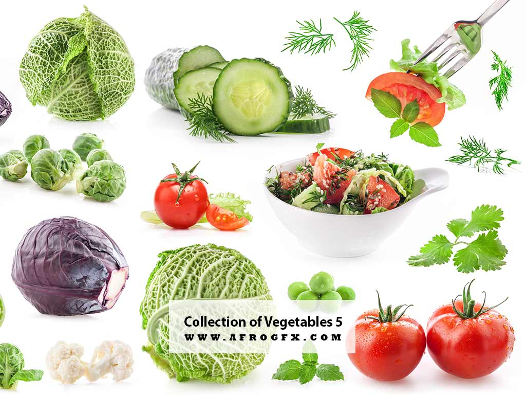 Collection of Vegetables 5