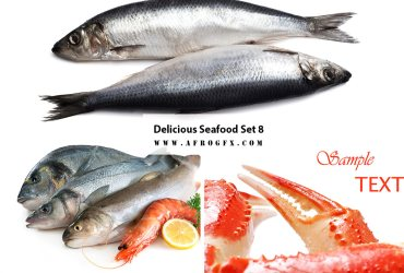 Delicious Seafood Set 8