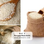 Rice grain Photo Stocks Set 1