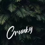 Crunky - No Copyright Audio Library