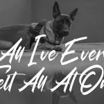All I've Ever Felt All At Once - No Copyright Audio Library