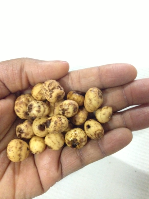 Tiger nuts and its Benefits - Afrolems Nigerian Food Blog