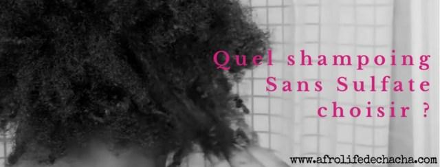 afrolife-shampoing-sans-sulfates-cheveux-afros-crepus-bonne-sante-afrolifedechacha