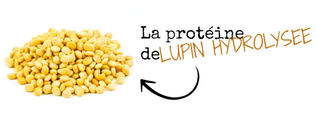 lupin-ingredients-pousse-croissance-cheveux-crepus-afro-afrolifedechacha