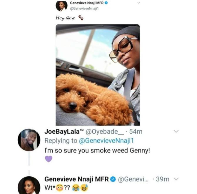 Genevieve Nnaji replies fan who called her a weed smoker