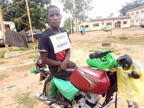 PHOTOS: Police arrest seven-man gang of dare-devil robbers for terrorising Adamawa communities