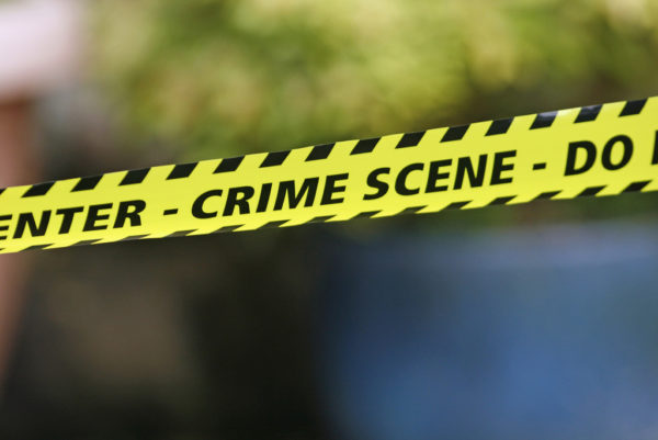 Cops begin manhunt after 80-year old woman's murder in Limpopo