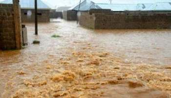 Flood kills four, destroys 5200 houses in Kano