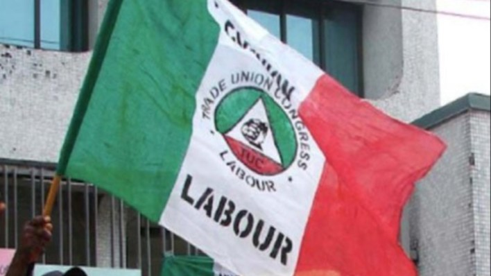 NLC, others say no to resumption of schools