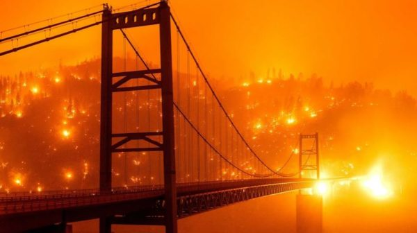 Unprecedented bushfires kills 15 in Western US over 500,000 evacuated