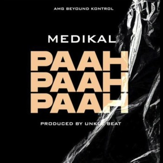 MP3: Medikal – Paah Paah Paah     Download