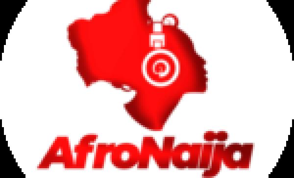 Idols SA signs deal with Kalawa Jazmee record label