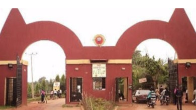 Auchi Polytechnic debunks rumour of Rector's death