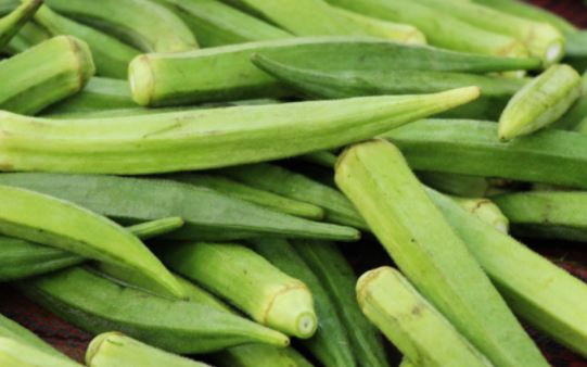 6 reasons to add Okra in your diet