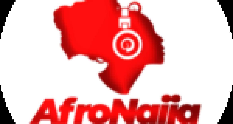 Again, herdsmen destroy, set Falae's farm ablaze, attack workers