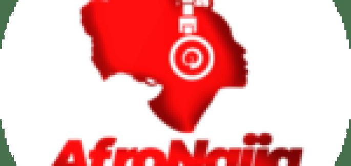 Nigeria's President Buhari, Babagana Zulum meet in Aso Rock