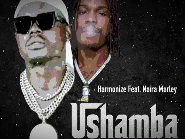 Harmonize Ft. Naira Marley - Ushamba (Remix)