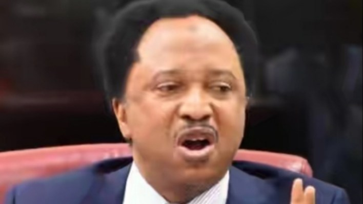 Shehu Sani reacts to opposing figures of abducted Kankara school boys