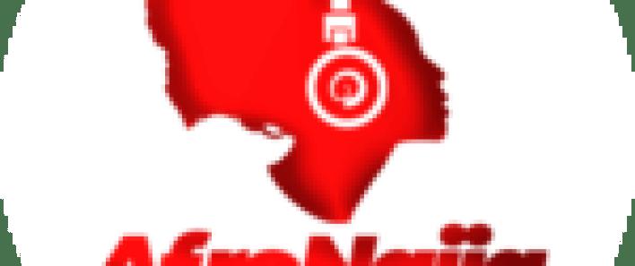 Kano state Assembly Speaker, Majority leader resign