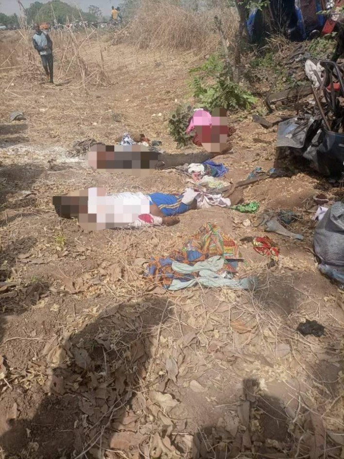 Mother and her 3 kids, 9 others killed in Benue road accident