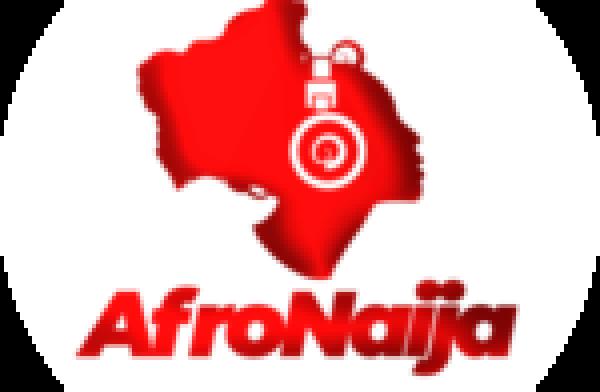 Nigerian star, Niniola worships Busiswa's derriere – Watch