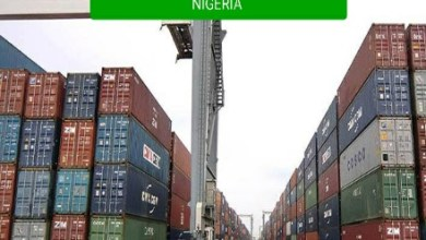 items that can be imported into Nigeria
