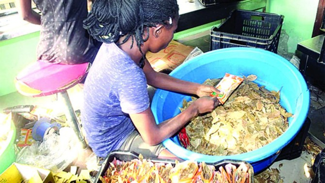NAFDAC shuts down food company over revalidation of expired curry, thyme products