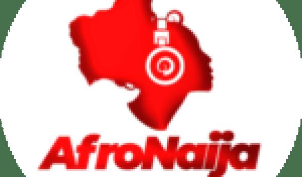 Babes Wodumo shares funny photo of Mampintsha's stomach