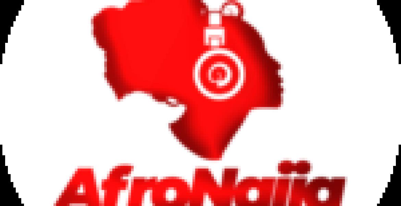 No plan to rename Kaduna State University – Registrar