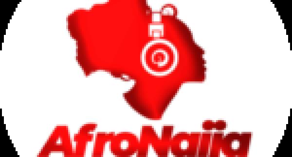 Wakanda TV series on the way