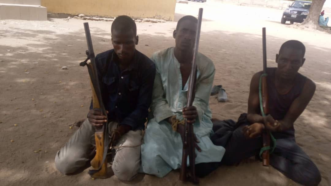 Police arrest three suspects over kidnapping and armed robbery in Adamawa