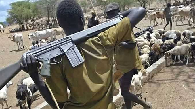 Herdsmen attack farmers in Taraba community, injure two