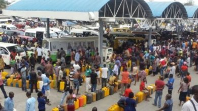 Fuel queues: DPR to sanction marketers hoarding petrol