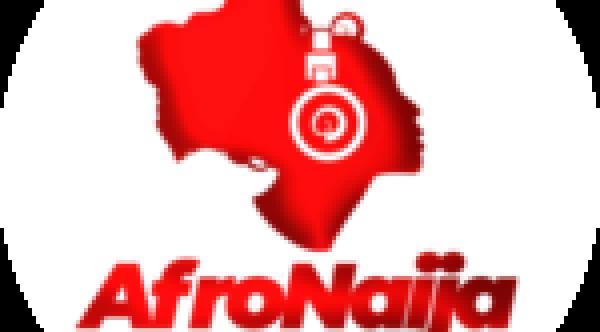 Buhari receives briefings from Osinbajo after UK trip