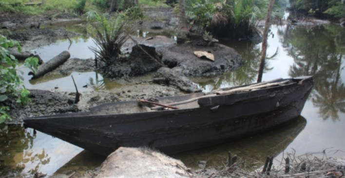 Reps panel tackles NOSDRA over quality of work on Ogoni clean-up