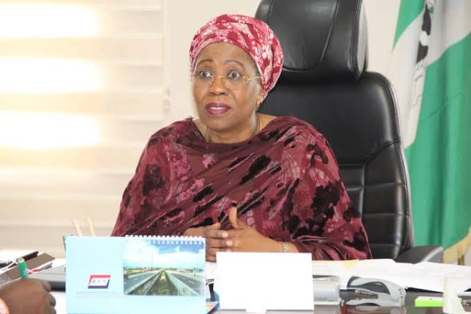 Buhari's minister collapses during official engagement in Bauchi