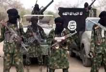 Boko Haram steals five tractors, set two ablaze in Yobe state