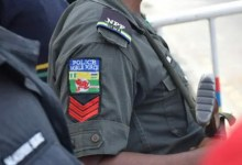 Police apprehend 259 suspects over alleged banditry, kidnapping in Niger