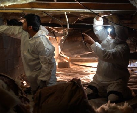 Should You Invest In a Crawl Space Inspection?