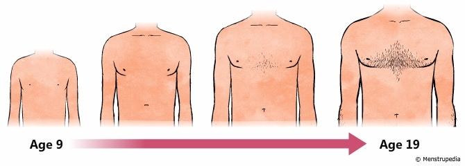 dada pada laki laki tumbuh menjadi tampak lebih bidang