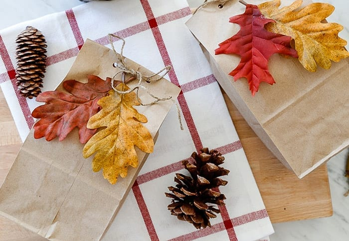 A cute Fall DIY bag for gifting pumpkin apple bread to friends and family!