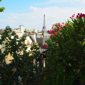 Rooftop / Toits - Peninsula Paris