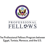 Hands Along the Nile Development Services (HANDS) Fellowship Programme for MENA Countries 2017