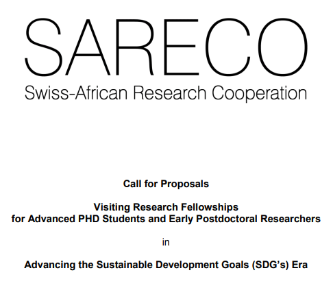 SARECO Visiting Research Fellowships