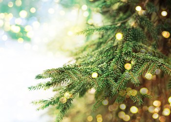 Χριστουγεννιάτικου Δέντρου