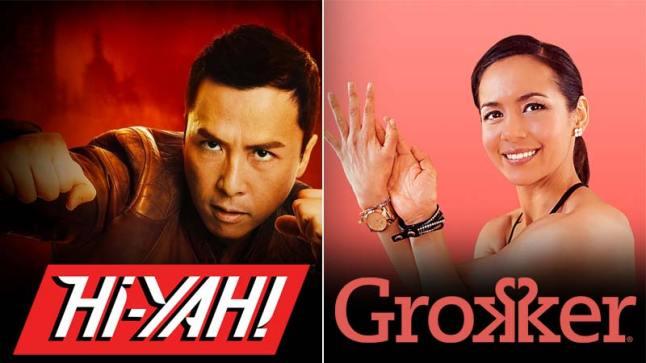 hiyah-hi-yah-grokker-add-on-subscription-header