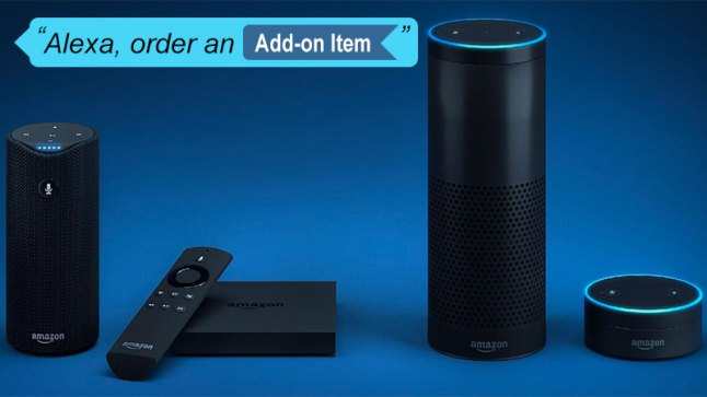 alexa-add-on-item
