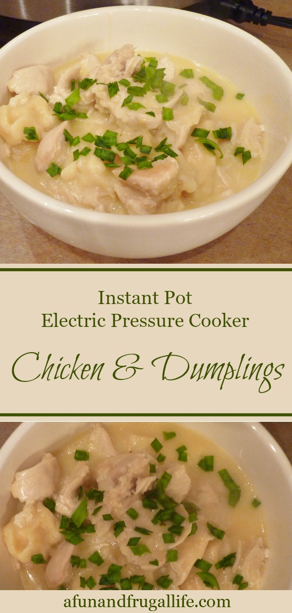 electric pressure cooker  chicken  dumplings  a fun and