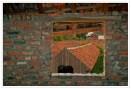 112 Ton van Boxsel Steenfabriek, Noeveren, Boom 5