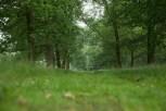 WGN 160720 Joop Rijndorp (5)